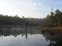 041230074046_morning_pond_of_kanha