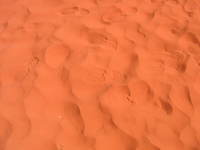 009_footprints_in_the_desert