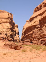 024_the_siq_we_walked