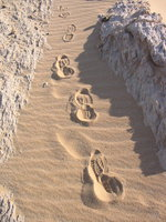 021_footprints_in_white_desert