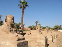 001_sphinx_street_of_luxor
