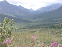 07250023_tombstone_mountain