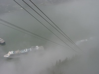 06140047_fog_and_cruise