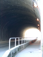 06170188_going_through_the_tunnel