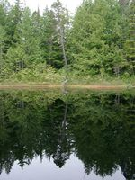 07020053_mirror_of_little_lake