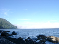 06260022_fogs_of_thrasher_cove