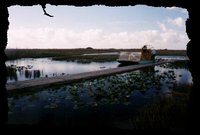 001_everglade_airboat