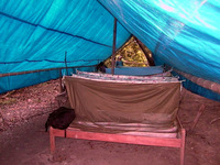 010_amazon_jungle_camping