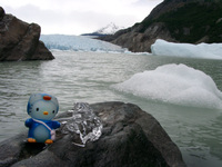 11130032_kitty_and_glacier