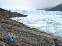 11160023_penguin_kitty_and_moreno_glacier