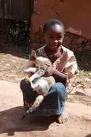 child with a cat Rawangi, East Africa, Tanzania, Africa