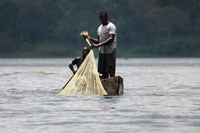 catch of the day Jinja, East Africa, Uganda, Africa
