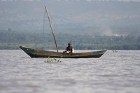 old fisherman Kisumu, East Africa, Kenya, Africa