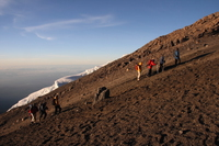 ascending hikers Kilimanjaro, East Africa, Tanzania, Africa