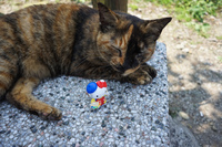 20160406120514_Hello_Kitty_in_houtong_cat_village