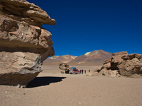 formation in desert of siloli Laguna Colorado, Potosi Department, Bolivia, South America