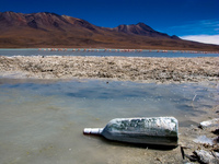 view--bottle in laguna honda Laguna Colorado, Potosi Department, Bolivia, South America