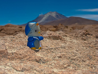volcano ollague and hello kitty Laguna Colorado, Potosi Department, Bolivia, South America